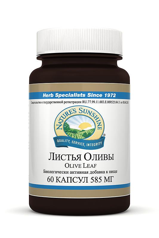 Olive Leaf Extract. Экстракт Листьев Оливы