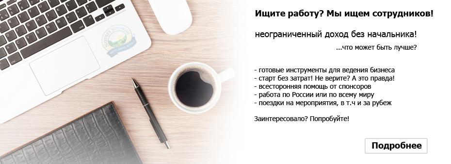Бизнес в компании НСП