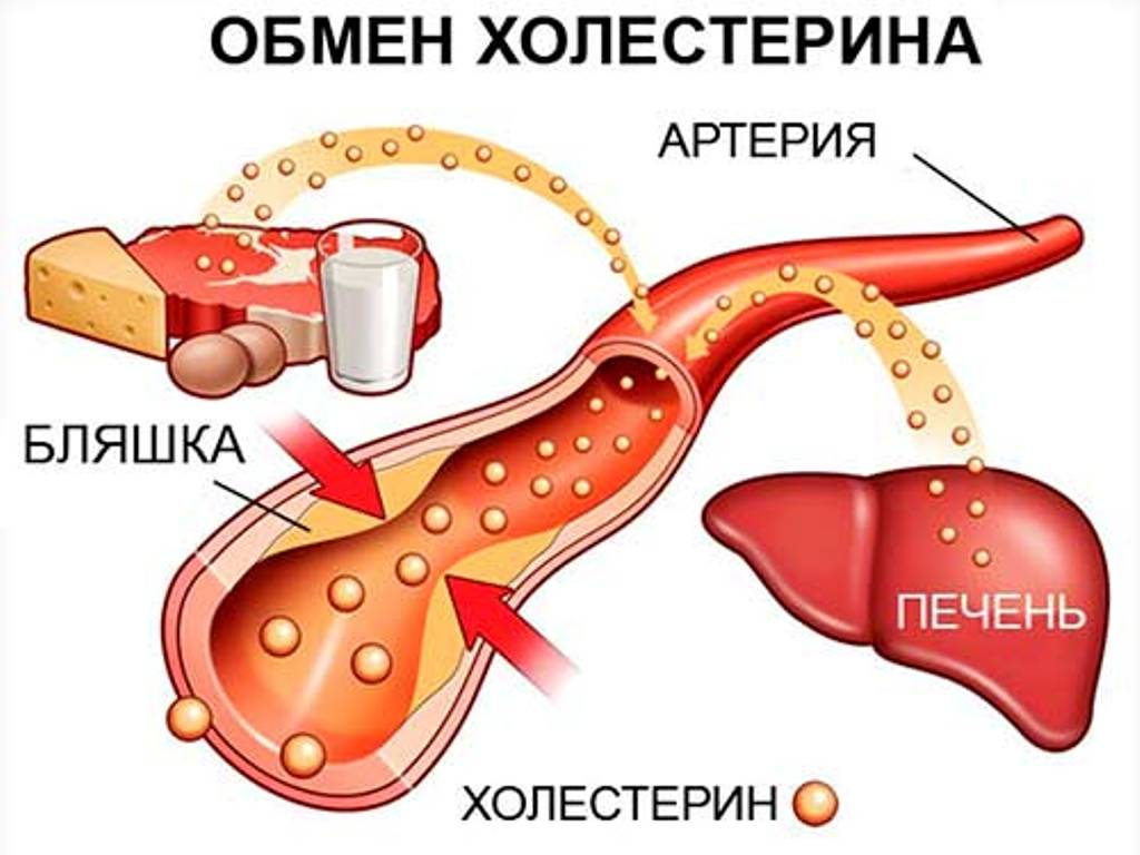 Продукты для снижения уровня холестерина