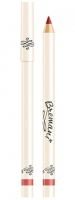 Бархатный карандаш для губ,Винный,Burgundy,Светло-коричневый,nsp,bremani