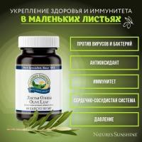 Olive Leaf Extract,Экстракт Листьев Оливы, нсп листья оливы, купить листья оливы, nsp листья оливы, бад олива