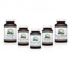 Набор Защита сосудов, Защита сосудов нсп, набор nsp сосуды, набор нсп сосуды, нсп капилляры, нсп холестерин, антиоксидантная защита нсп